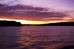 A Sydney Sunset